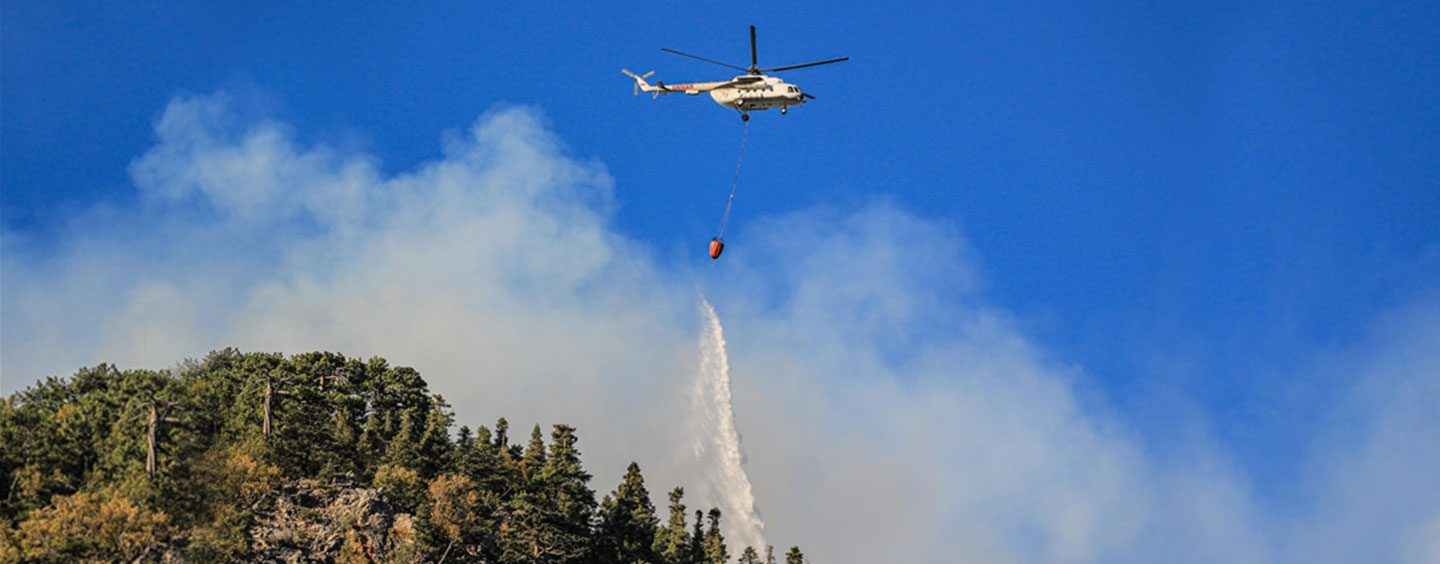 Total of 167 Wildfires in Turkey Now Under Control